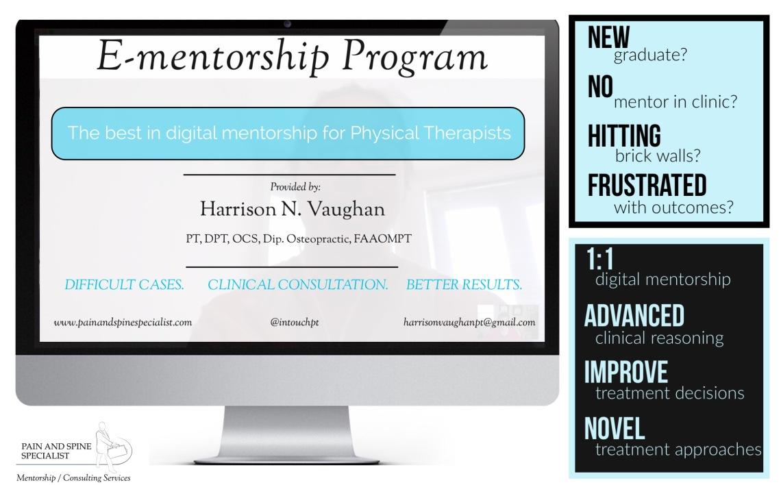 e mentorship pic for marketing